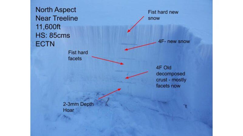 Weak faceted snowpack in a wind sheltered area near treeline