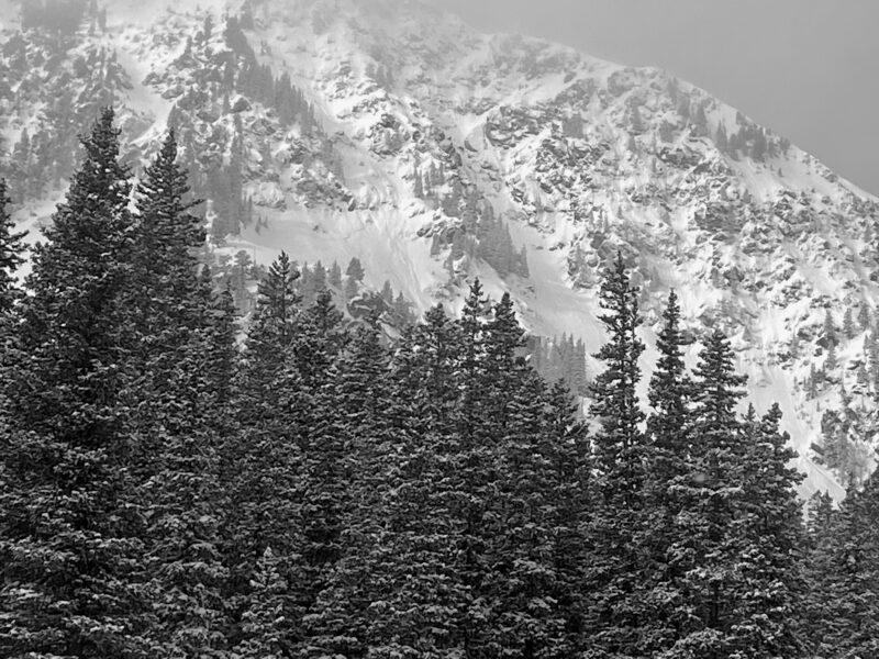 Natural avalanche from earlier this morning on an East aspect above treeline