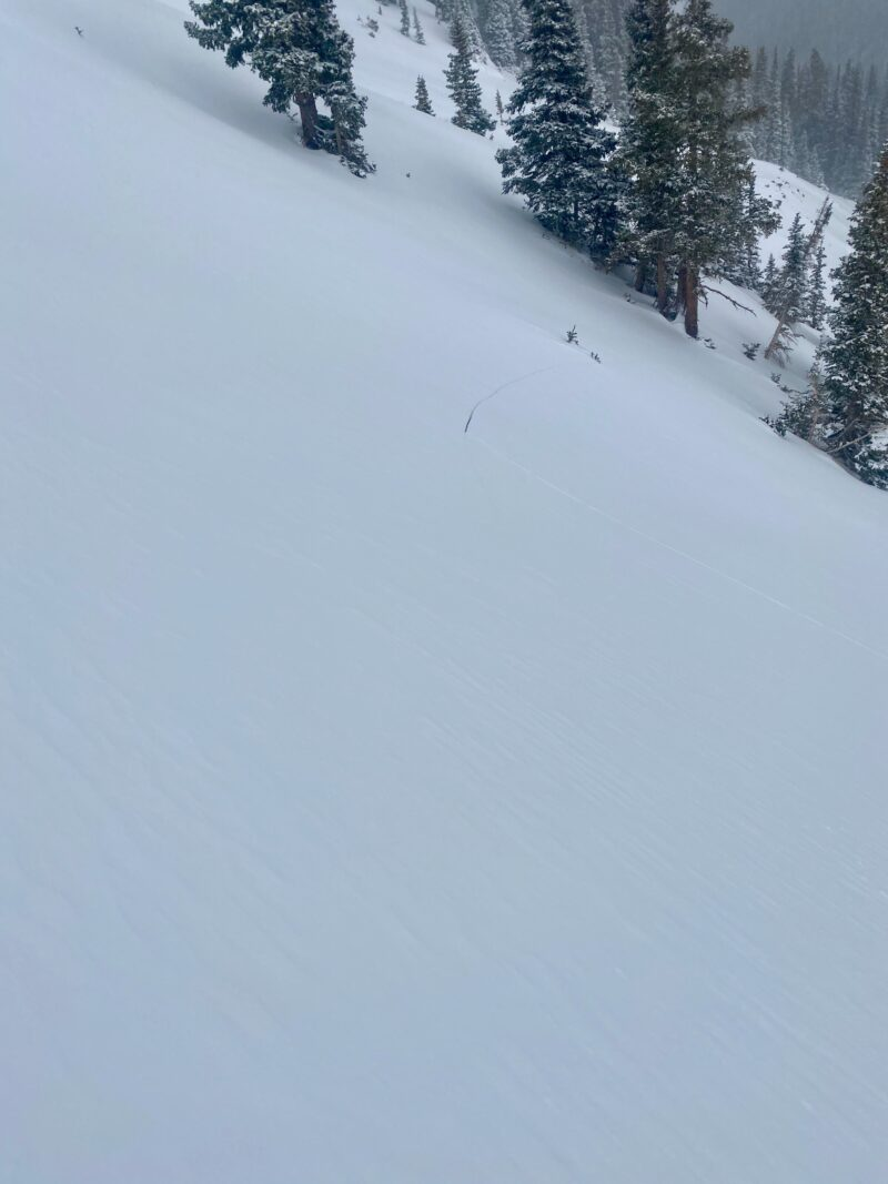 Shooting crack on an East aspect that we purposely tried to get to avalanche