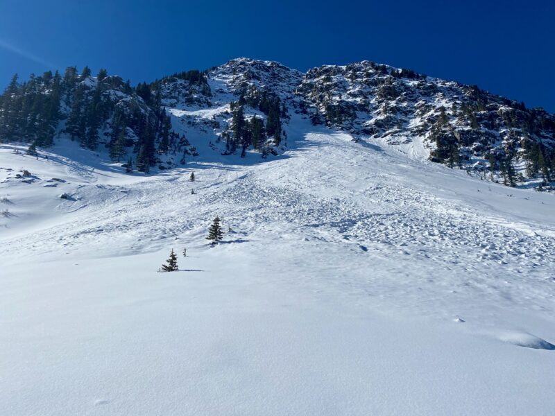 Natural avalanche from a repeat offender this year on the backside of Kachina Peak