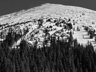 Feb 6, 2021: Large Natural Avalanches on a West Cross-Loaded slope within the past 48 hours.  These avalanches where 2 to 5 feet deep and ran well into the trees just above Williams Lake snapping trees.  These avalanches failed on facets just above the ground.