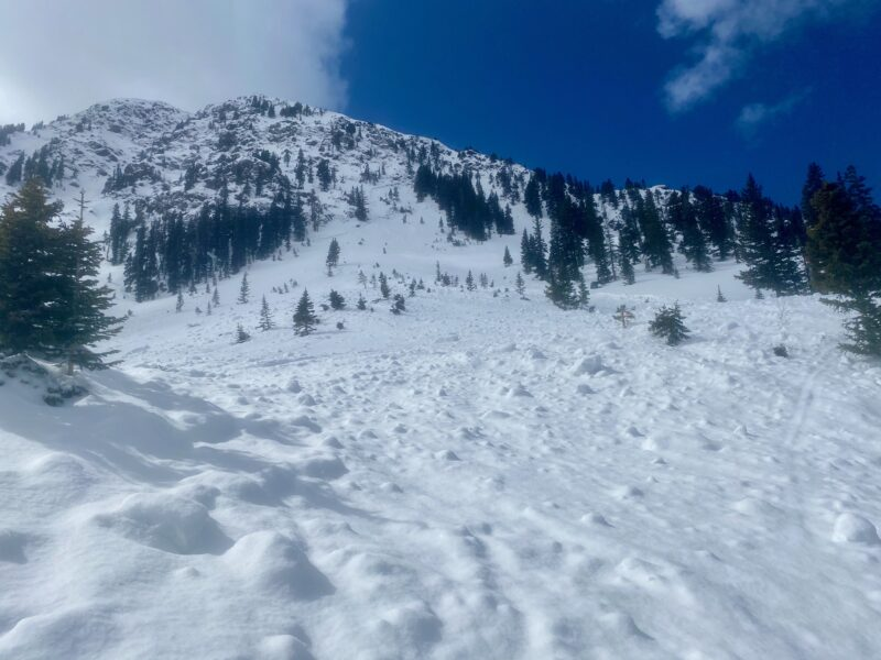 A natural persistent slab avalanche from last weekend. It's a good reminder before this next storm and loading event of how large a deeper persistent slab avalanche can be.