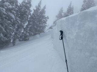 Mar 15, 2021: Another large natural avalanche that ran early Monday morning from the 3 feet of snow and 2.5