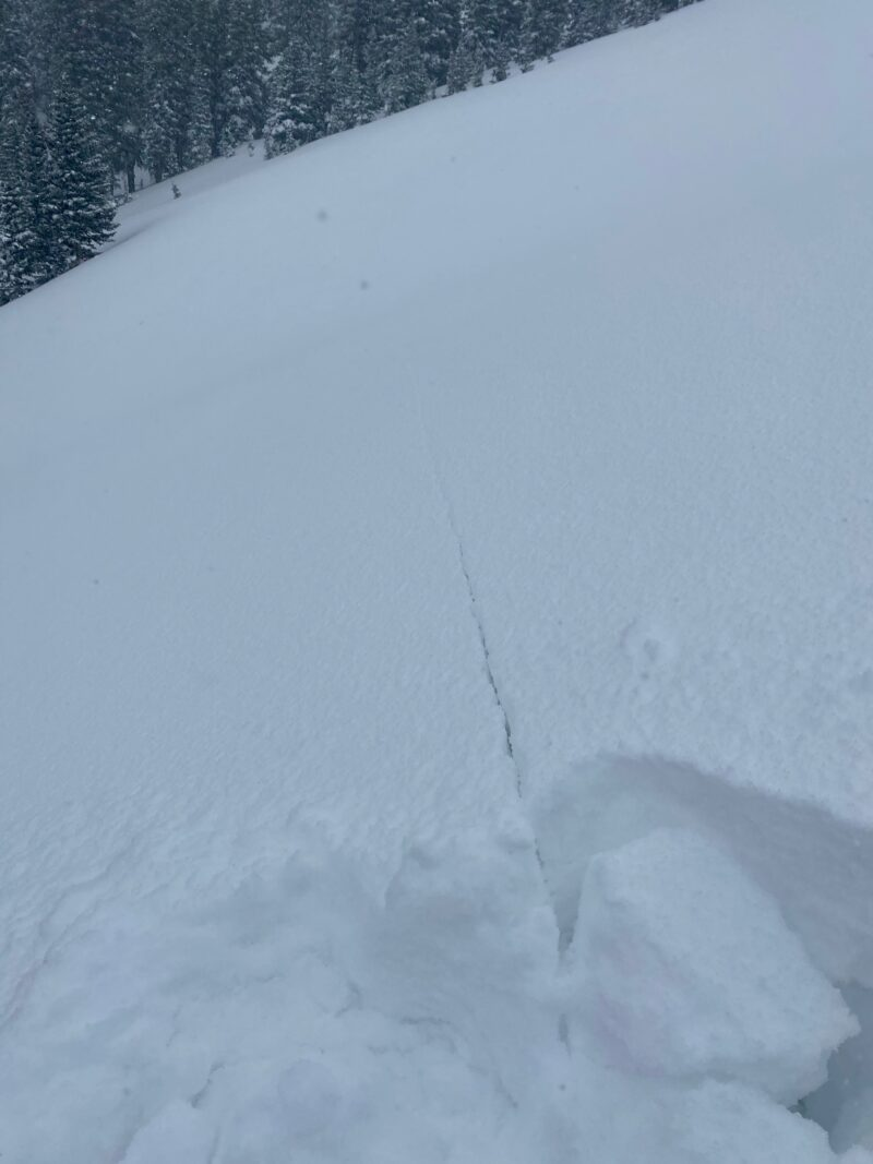 shooting cracks were widespread near and above treeline on steep slopes