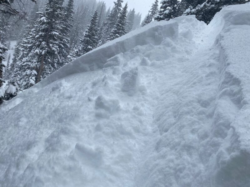 Small intentionally triggered avalanche with a ski cut below treeline